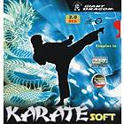 Giant Dragon Karate Soft