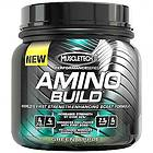 MuscleTech Amino Build 0,26kg